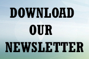 hearing aid newsletter